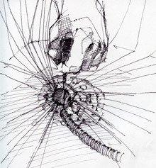 sketch by Michael Ahn
