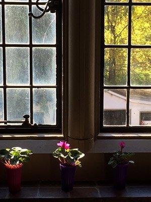 Bond Hall Window