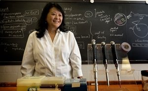 Amy Cheng Vollmer in lab.