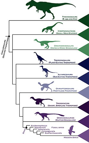 Dinosaur chart