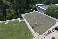 LPAC green roof