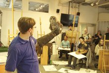 Academy of Natural Sciences visits our studios for live bird studies in the Foundation Drawing class.