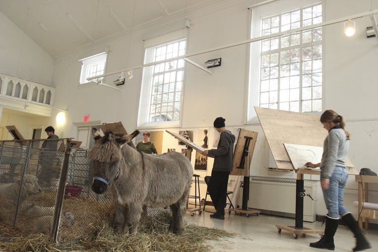 Foundation Drawing class sketching live animals in Old Tarble.