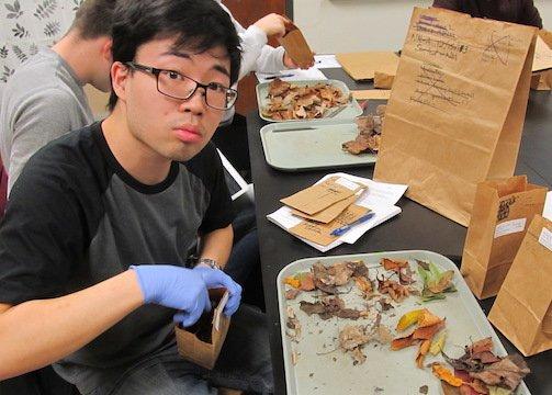 Ecology leaf litter lab