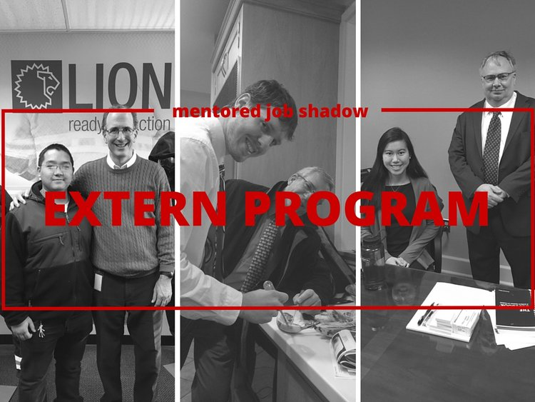 extern program mentored job shadow