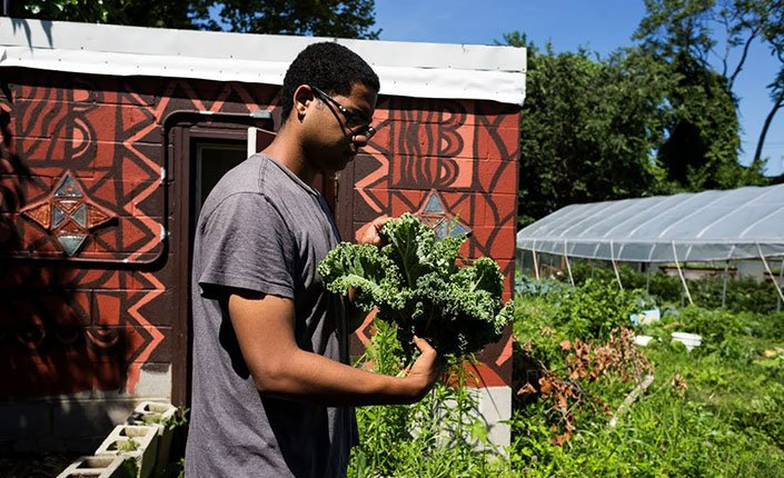 A student examines some vegetables