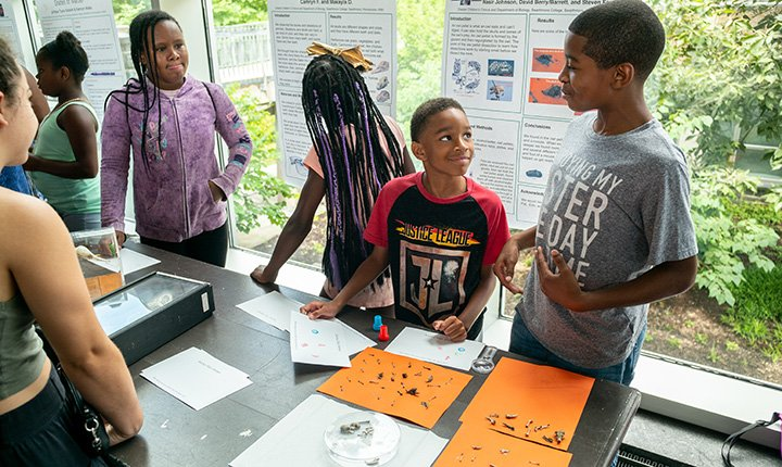 Two boys examine bones at science fair
