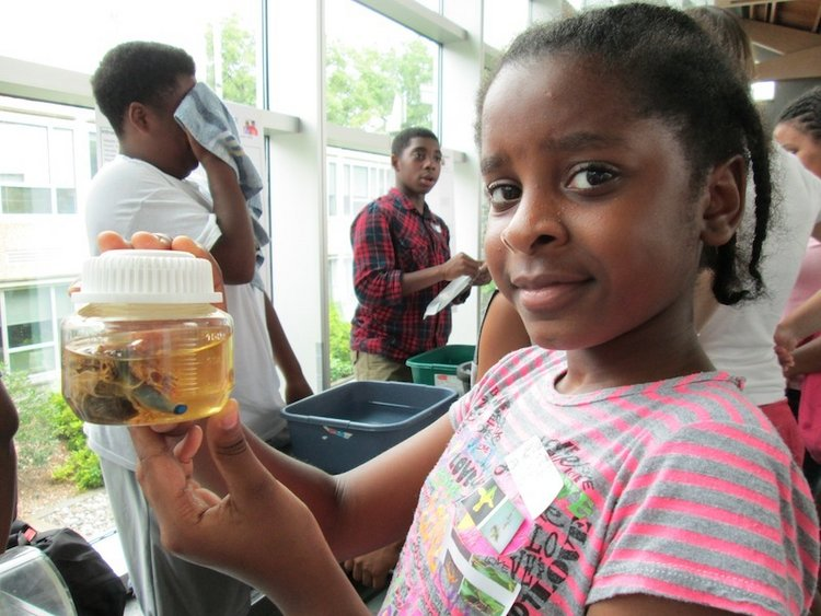 2012 SFK Science Fair 16