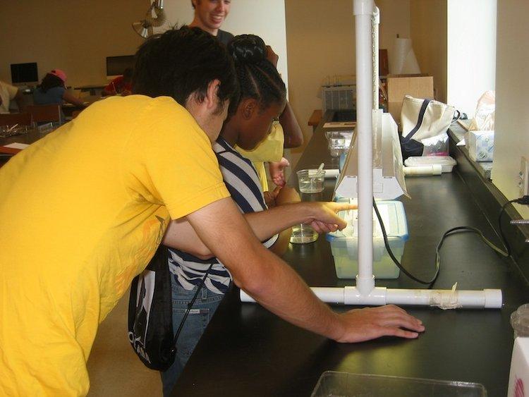 2012 SFK Bio Lab 6