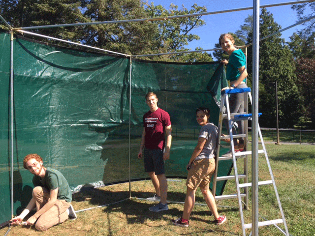 Students build a sukkah on the lawn