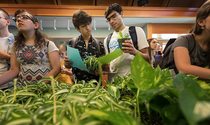 Two students look at their plants during the plant giveaway