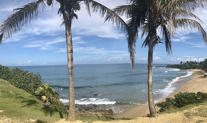 Tropical Puerto Rico