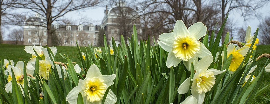 Parrish Hall behind flowers