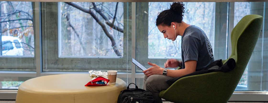 Student studies in Cornell library