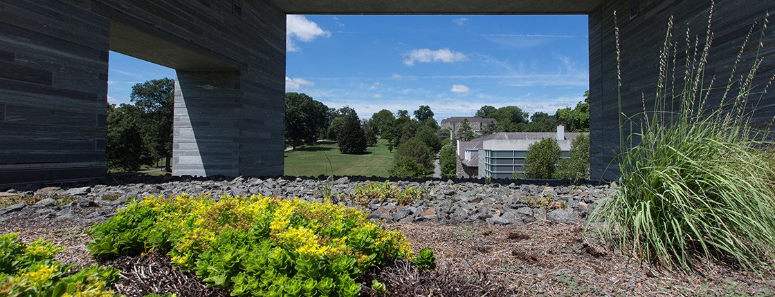one of Swarthmore's green roofs