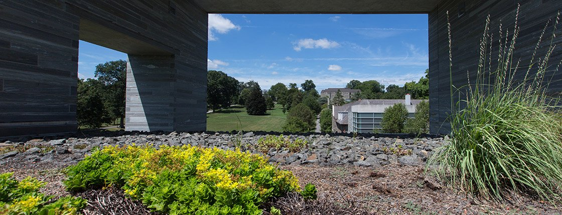 Green Roof on Swarthmore College campus