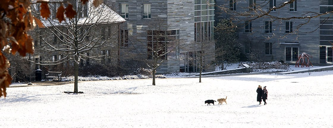 Two visitors walking their dogs on a snowy Swarthmore campus