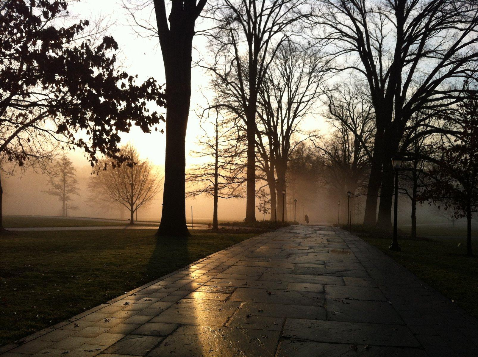 Magill walk at dawn