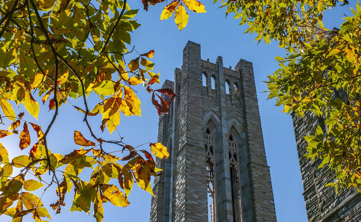 clothier tower in the fall
