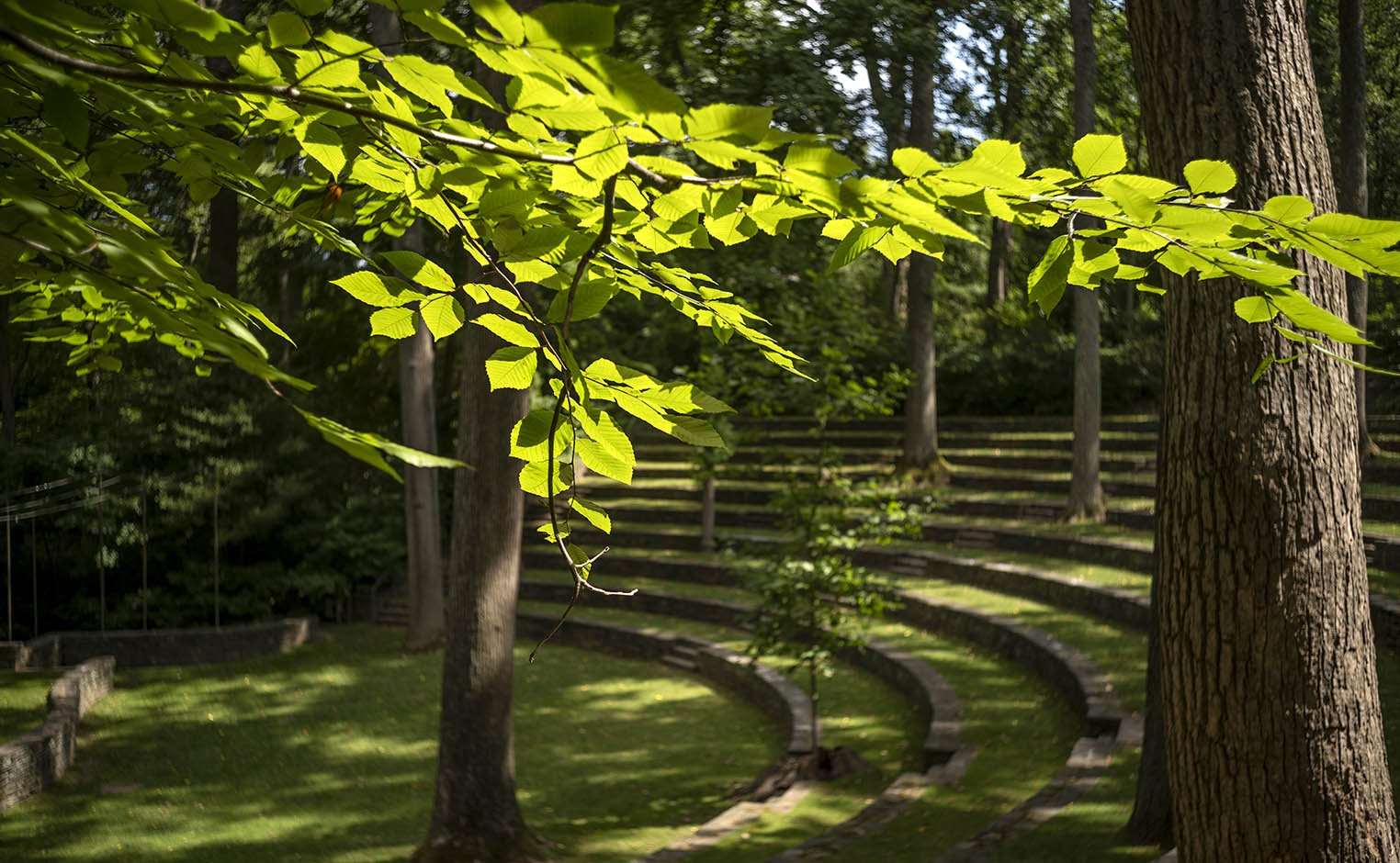 amphitheater in spring time