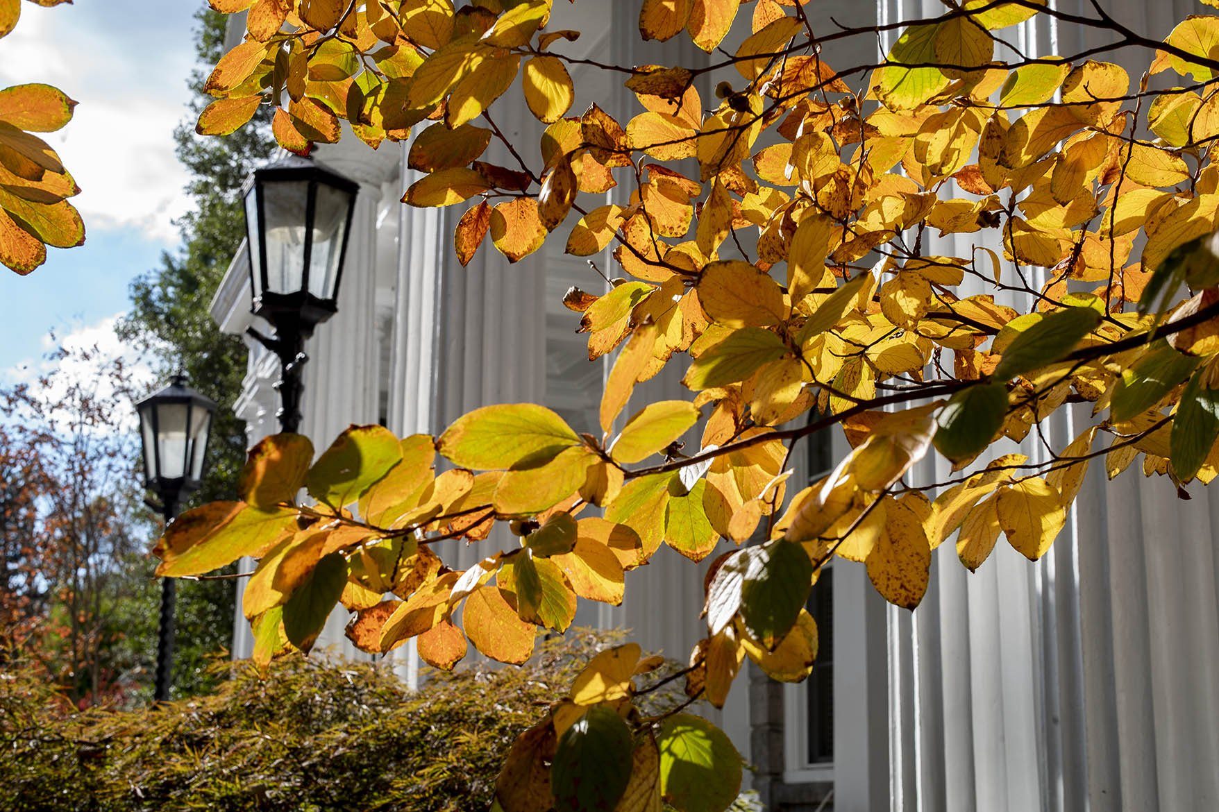 Parrish Hall in the Fall