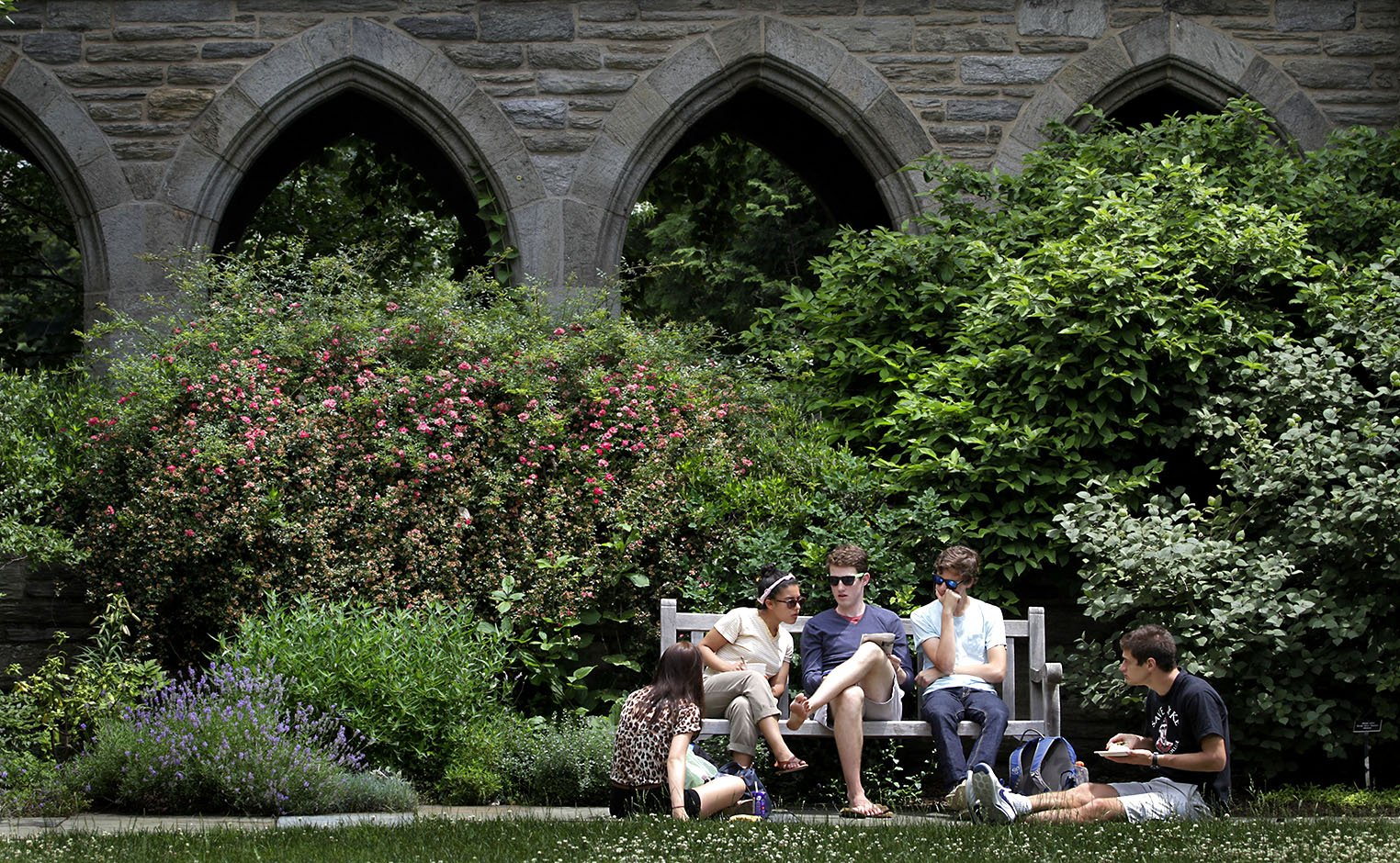 Students in courtyard garden