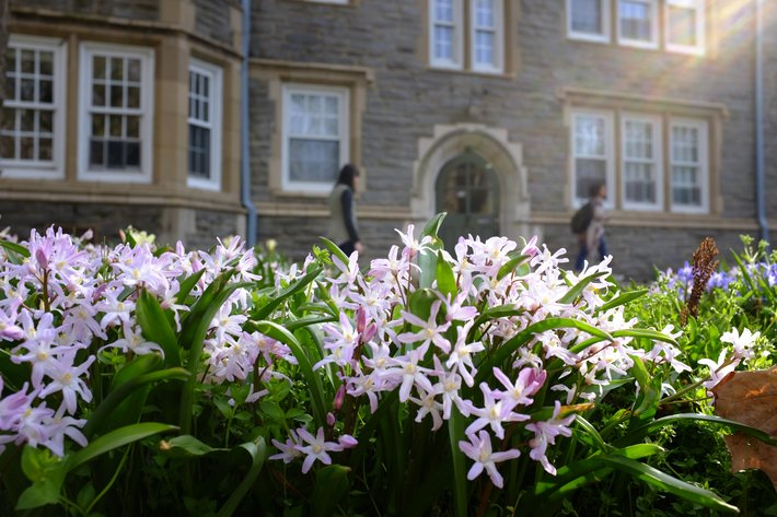 Spring flowers in front of Wharton Hall