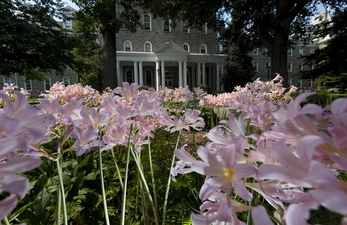 Pink flowers in front of Parrish Hall