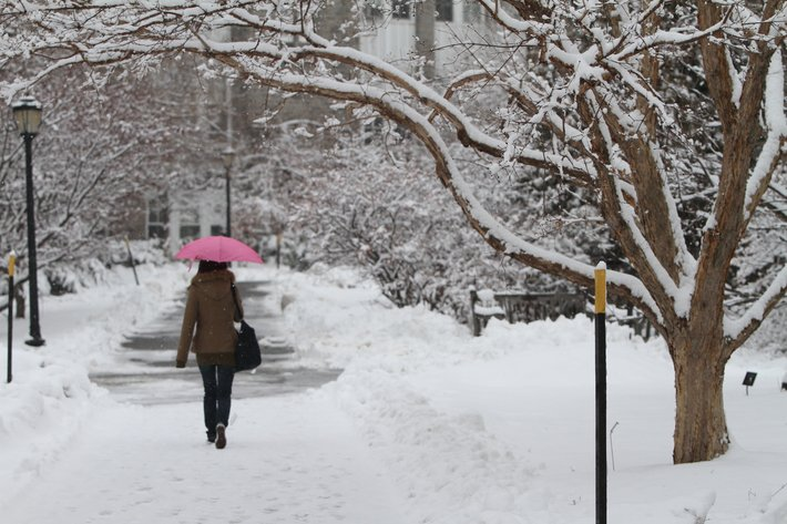 Student walking in snow with pink umbrella