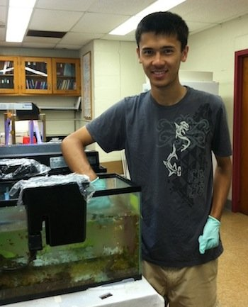 Young man standing with his gloved hand in fish tank - HHMI homepage