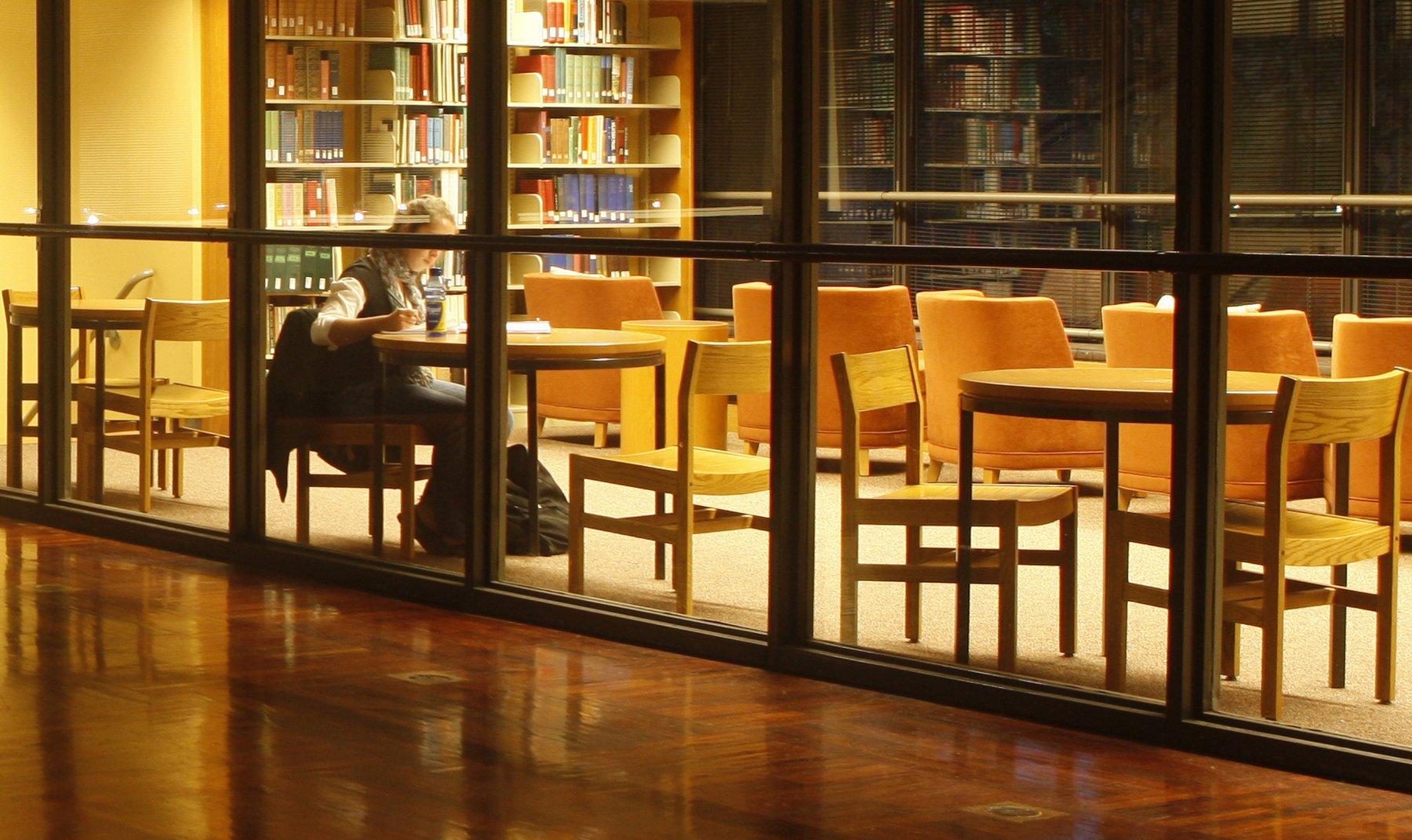 Mezzanine Floor Library