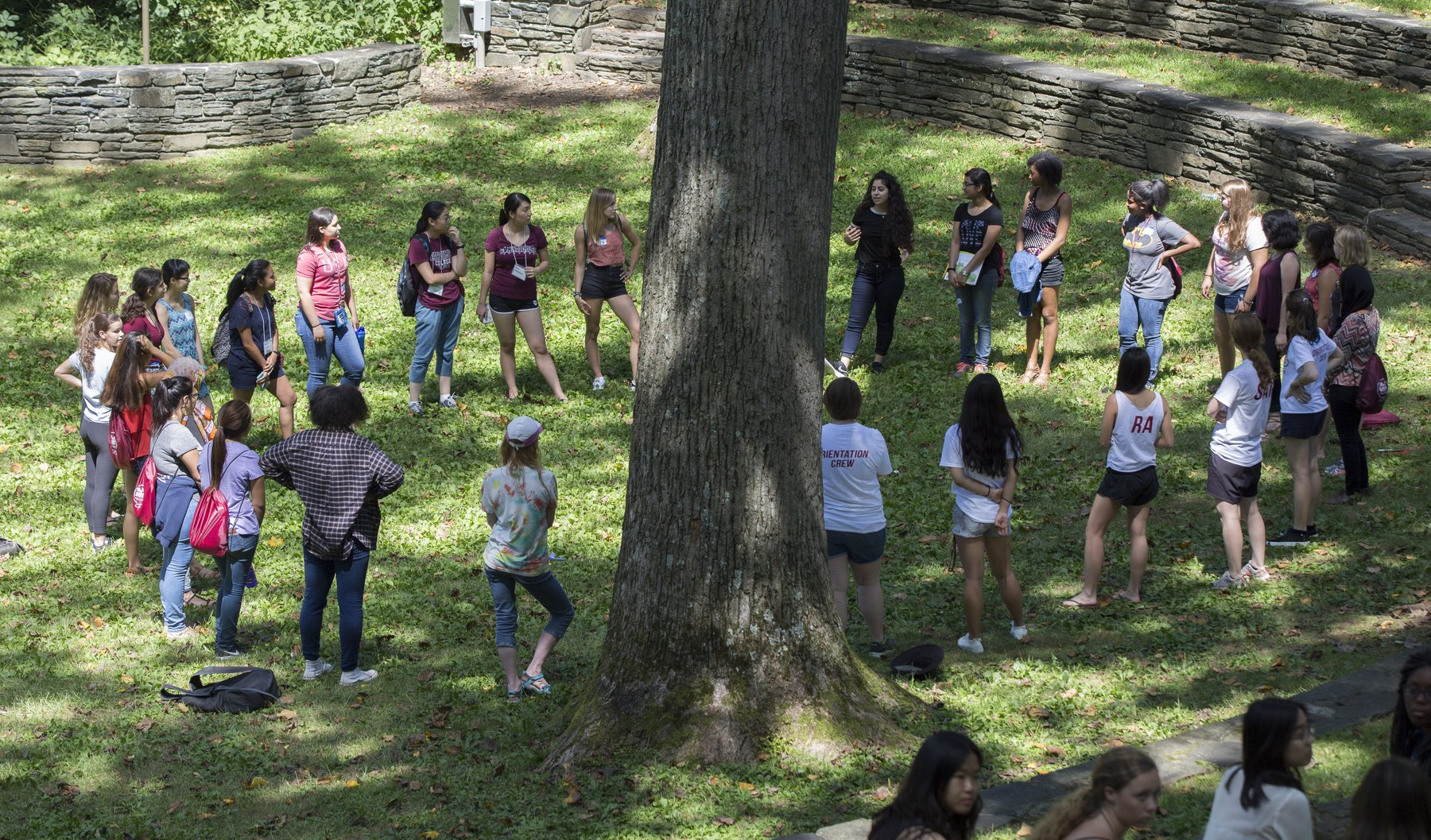 Orientation group in the Amphitheatre