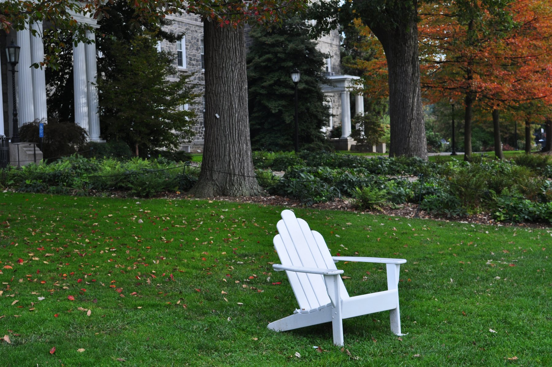 white adirondack chair on Parrish lawn