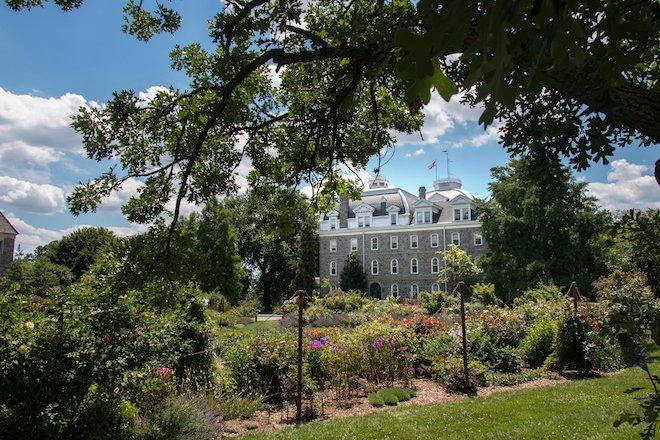 Dean Bond Rose Garden