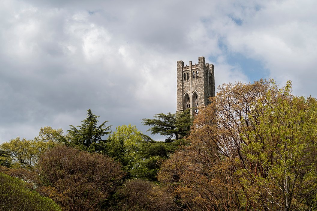 Bell tower in background surrounded by blooming trees