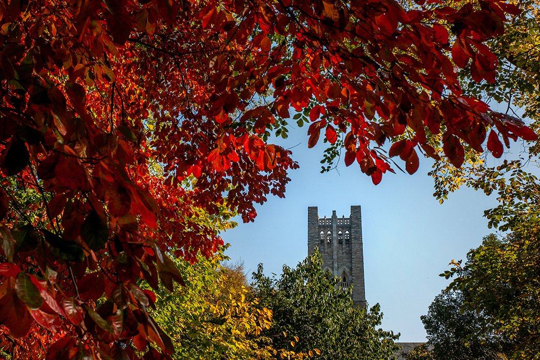 Bell tower in background with blue skies. Red leaves in foreground