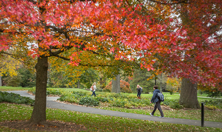 Students walk across campus on a fall day