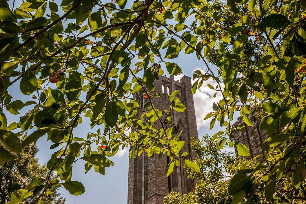 Belltower against blue sky behind tree branches