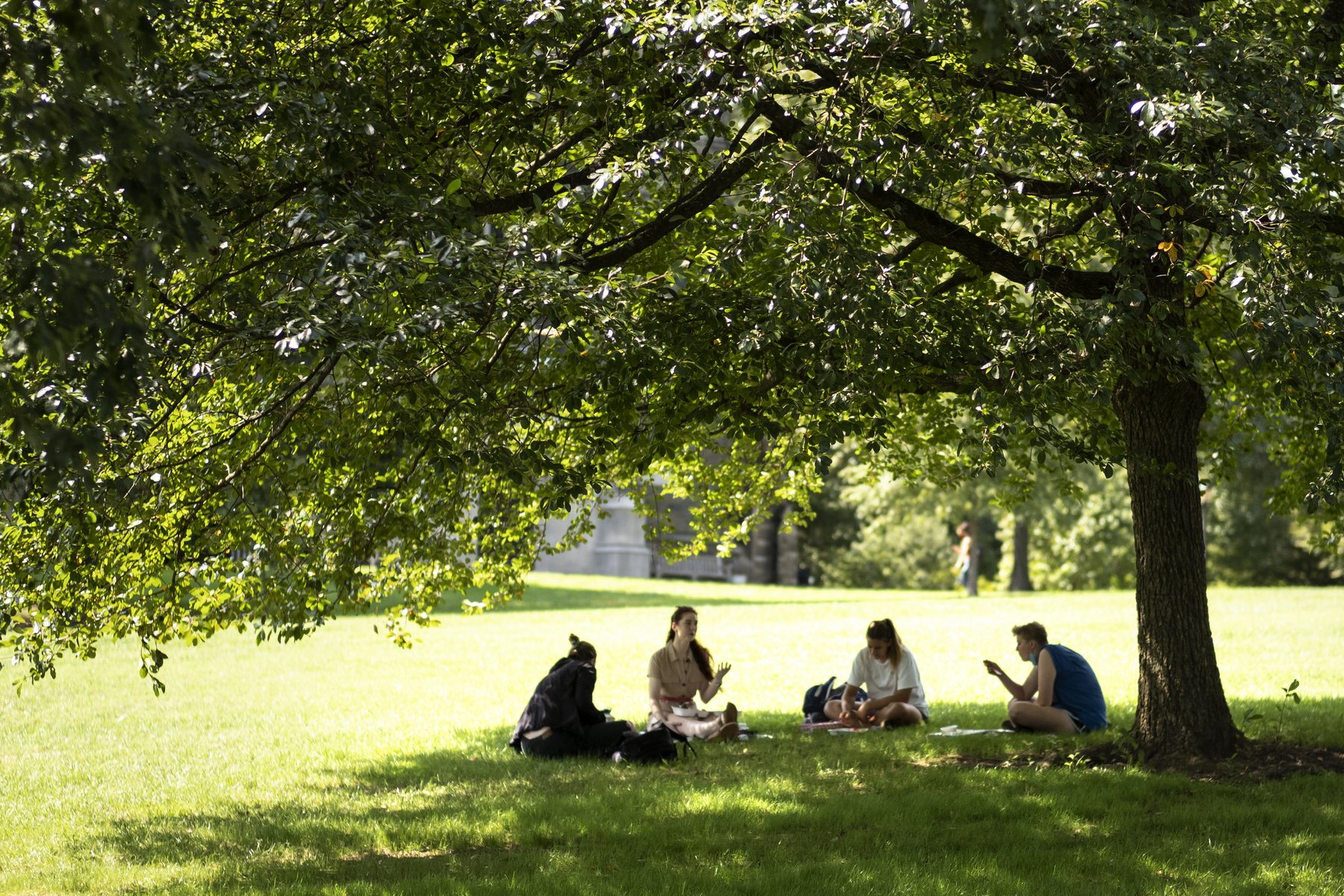 Four students on Swarthmore's campus, start of fall 2020