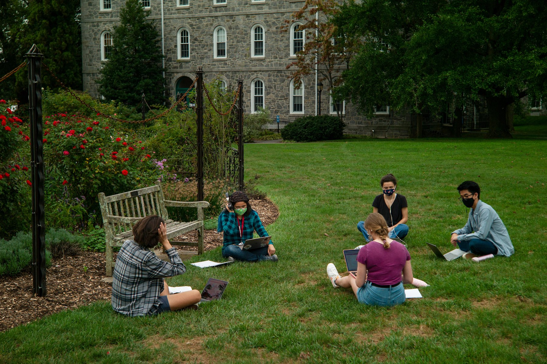 Students study together by the Dean Bond Rose Garden