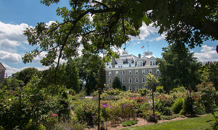 A rose garden in the foreground with Parrish Hall in the background