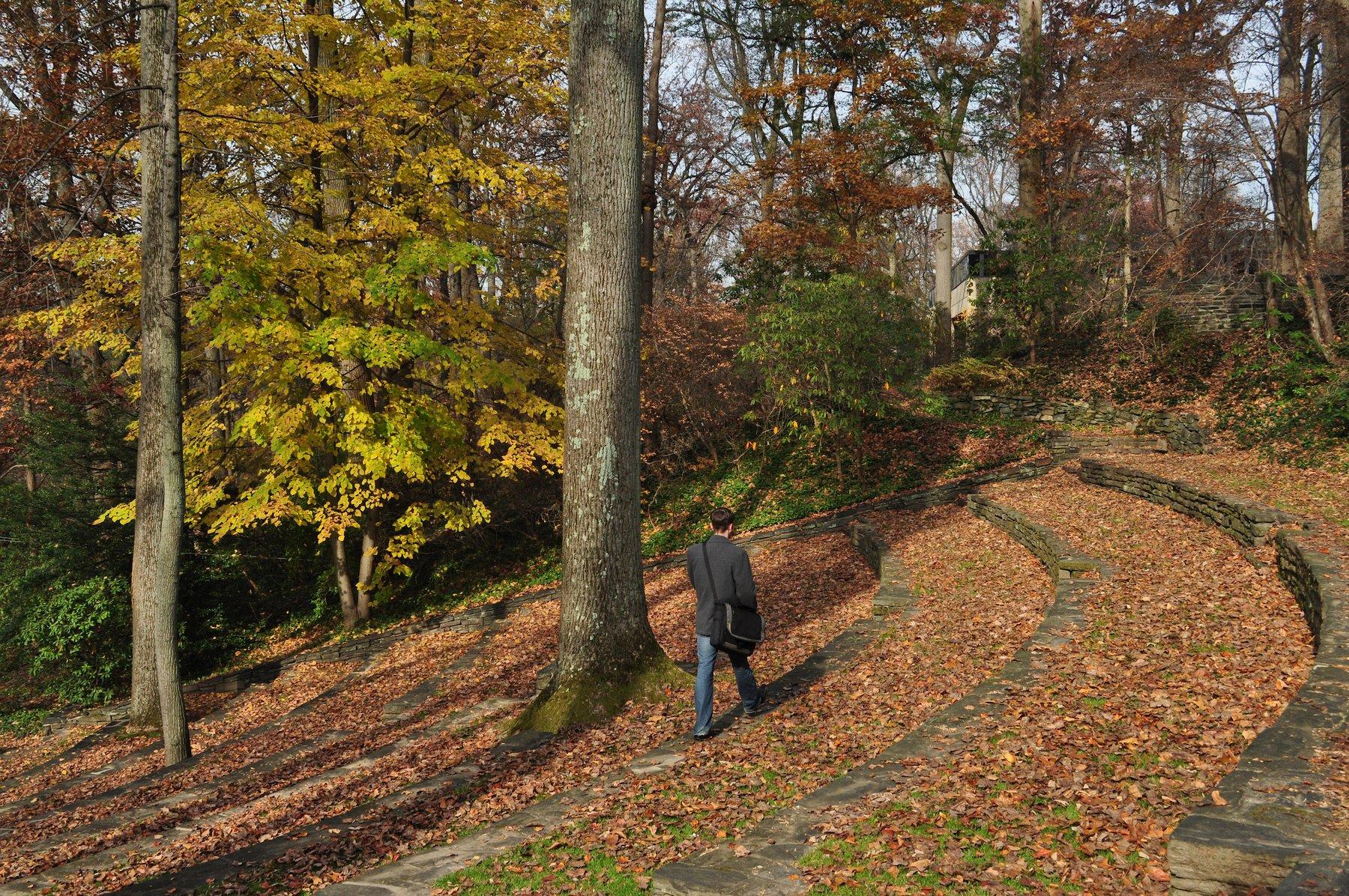person walking in amphitheater on fallen leaves