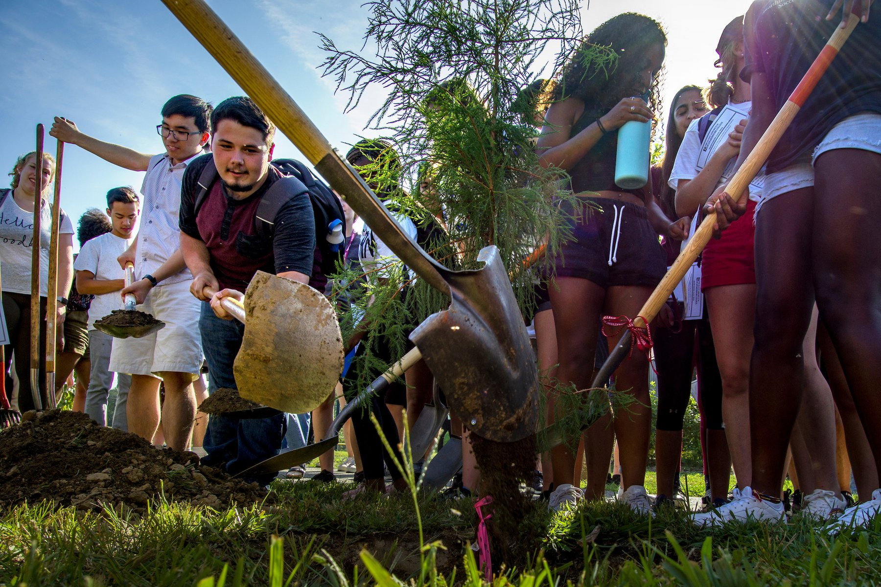 Class of 2024 plants their class tree as part of orientation activities on the campus of Swarthmore College