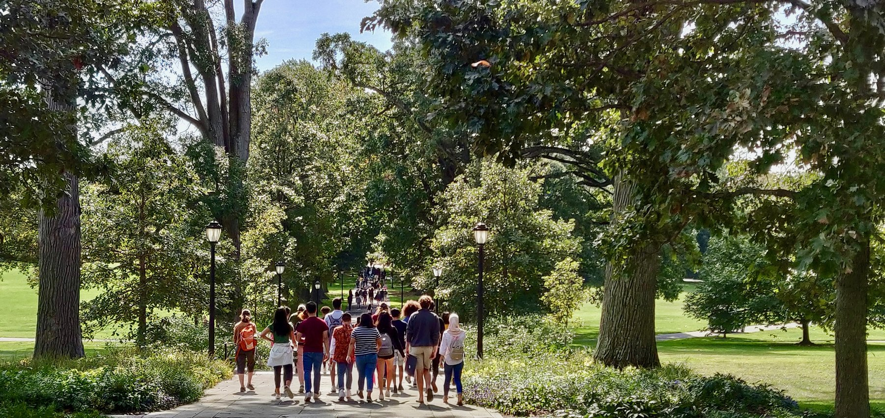 Students walking down Magill Walk